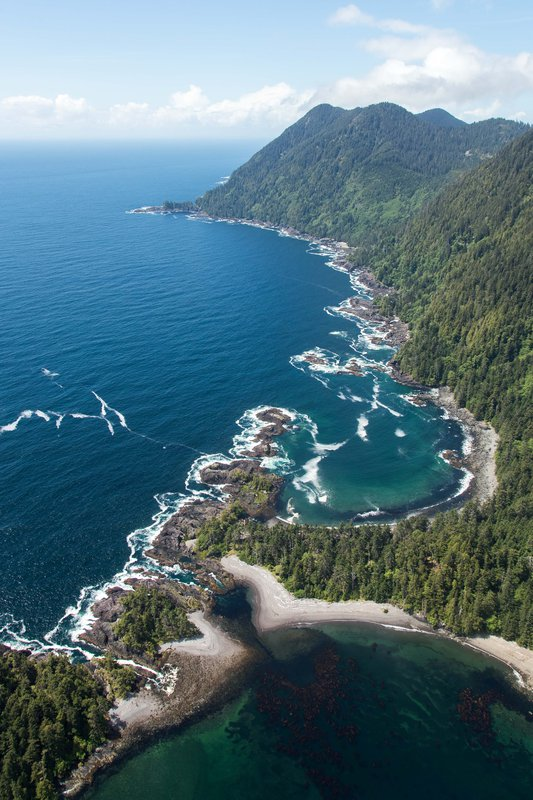 oceanhouse_-_west_coast.jpg
