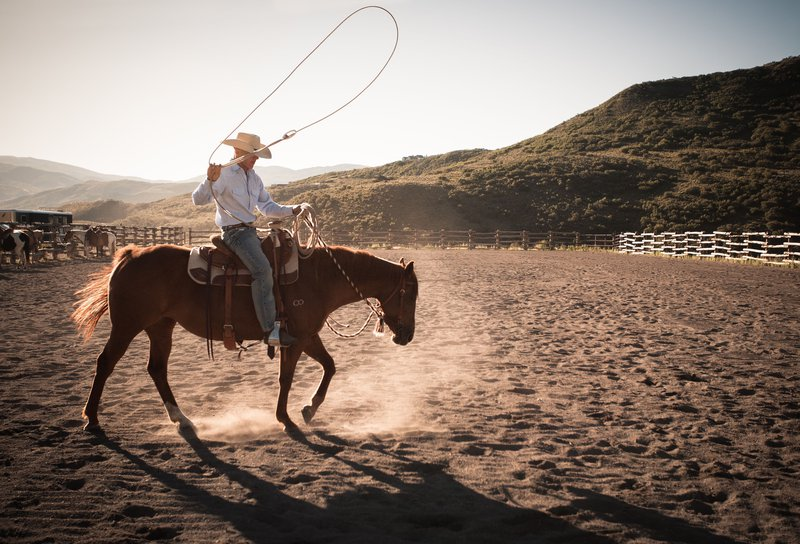 cowboy_on_horse_with_lassoo.jpg