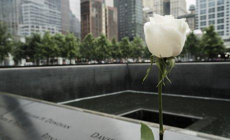 9/11 Memorial Museum Ground Zero Private Guided Tour