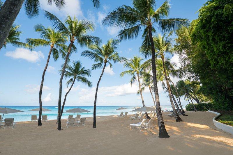 palms_on_beach_1200768_high.jpg