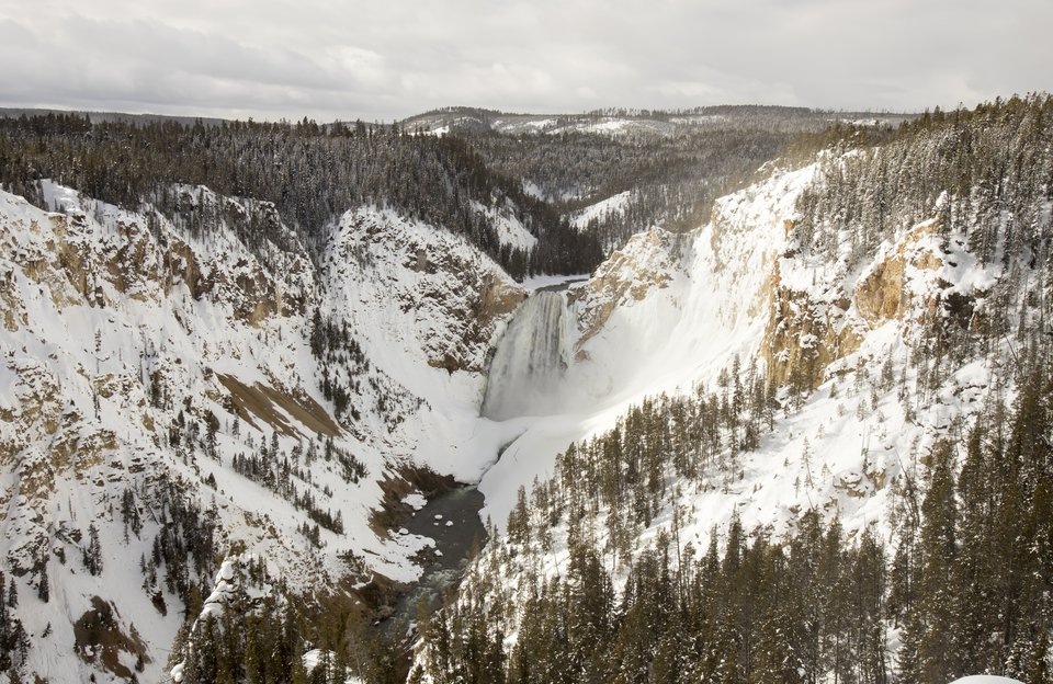 Winter Grand Canyon of the Yellowstone Snowcoach Tour