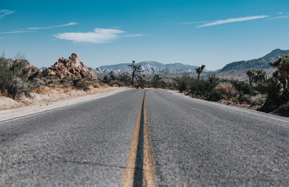 Private Joshua Tree National Park Sightseeing Tour