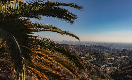 * Full-Day Tour of Los Angeles