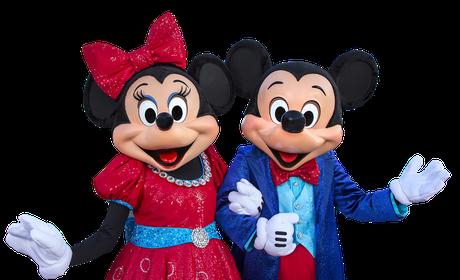 * Disneyland Private VIP Tour