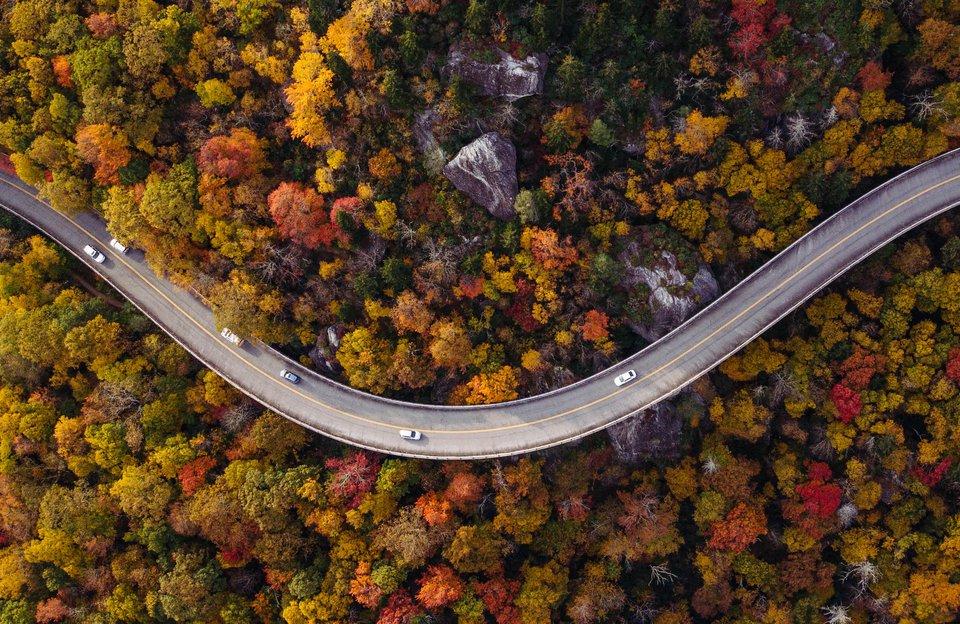 Advisor Booking Incentive for November Travel