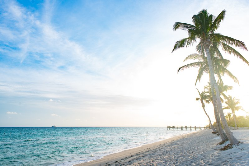 albany_beach.jpg