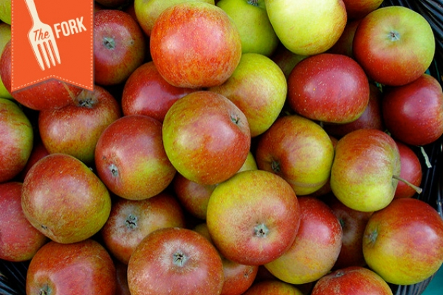 The Fork – The Apples Are Coming