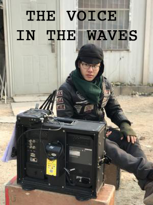THE VOICE IN THE WAVES