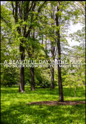 A Beautiful Day In The Park