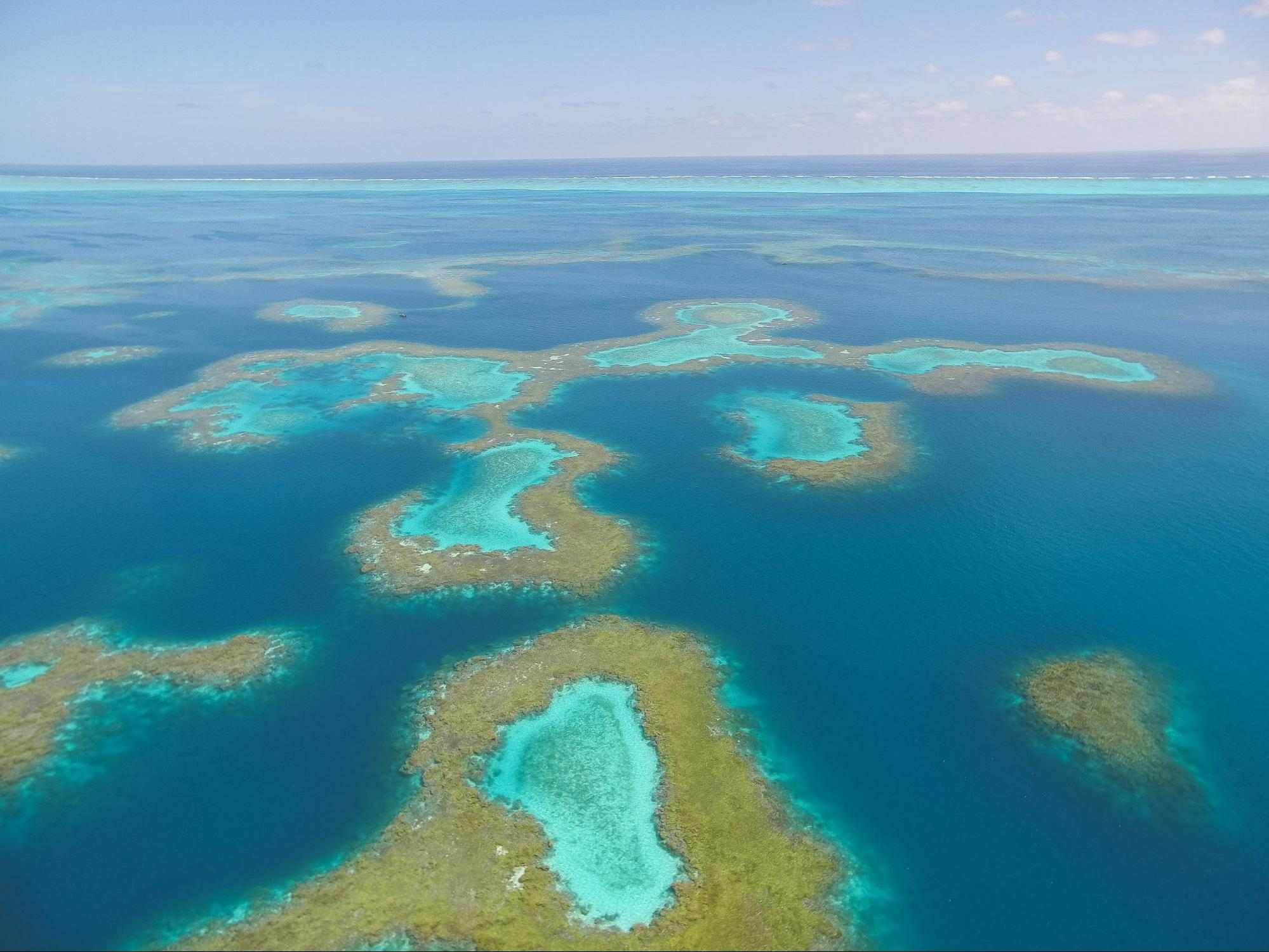 Aerial view of Pearl and Hermes Atoll.