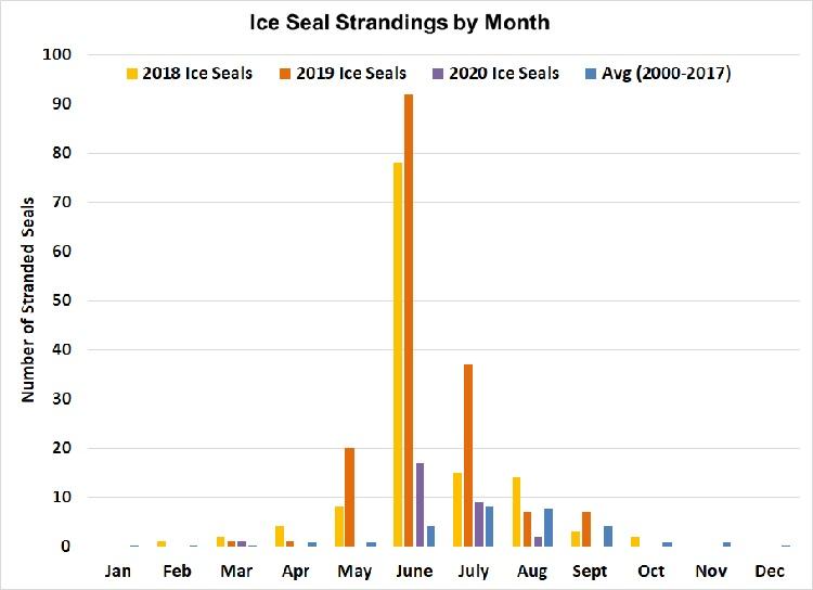 Graph of Alaska Ice Seal Strandings Chart