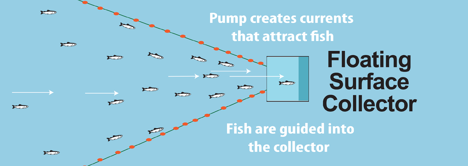 Diagram of a floating surface collector
