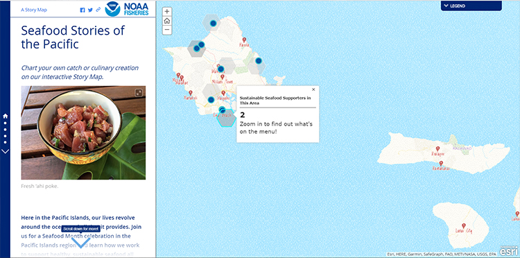 Screen shot of storymap.