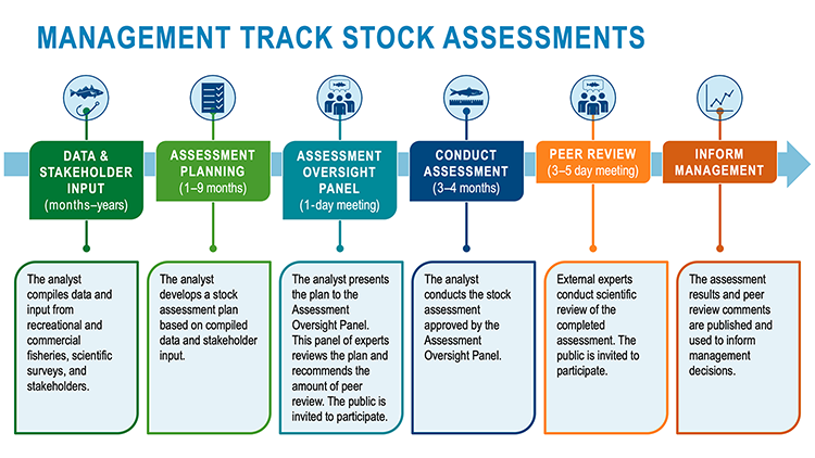 Show the steps involved in management track stock assessments to evaluate the overall health of a fishery and inform management decisions. There are separate sections for each step of the process from left to right with corresponding green, blue, and orange colors, small icons, and short descriptions. An icon with an Atlantic cod above a fishing hook represents data collection. An icon with a checklist represents planning.