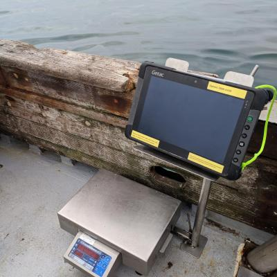 The components of OPTECS include a scale, tablet, and custom stand.