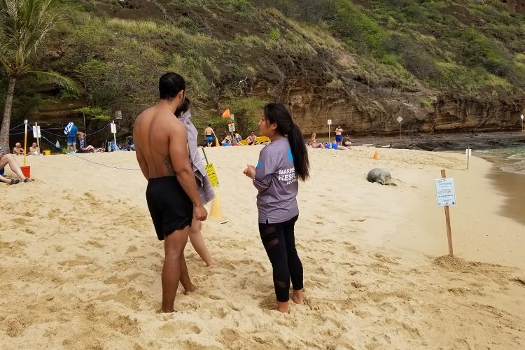 Monk seal volunteer talking to people on the beach about the seal barriers.