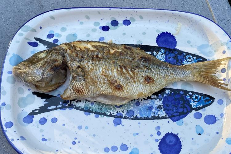 Grilled whole scup.
