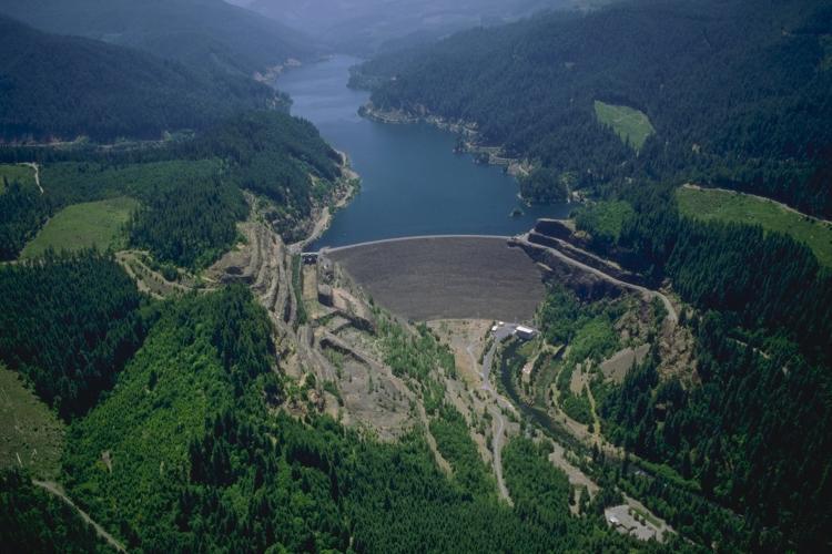 Cougar Dam