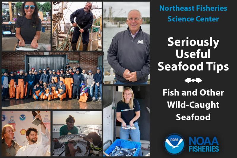 Northeast Fisheries Science Center stakeholders and industry partners graphic