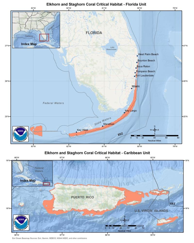 This is a map showing elkhorn and staghorn coral critical habitat in Florida and the Caribbean.