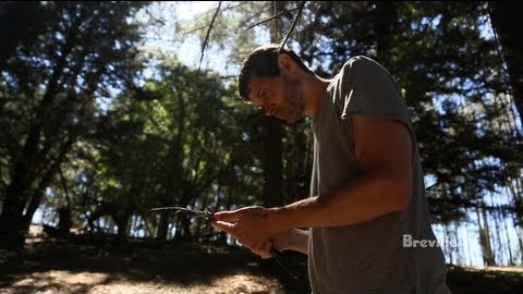 Foraging with Daniel Patterson