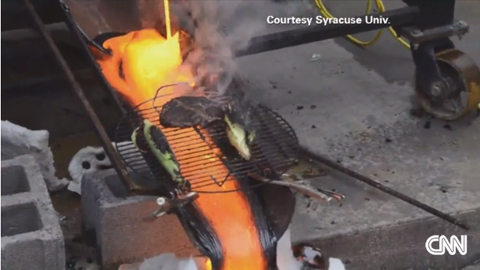 Steak Cooked Over Lava: Next Food Trend?