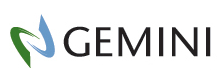 Gemini Corporation