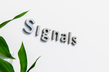 Signals Design Group Inc.
