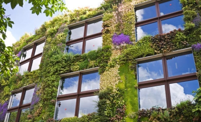 NPO funding for Vertical Gardens – Durham