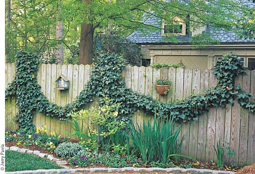 create ivy swags  garden gate enotes, Natural flower