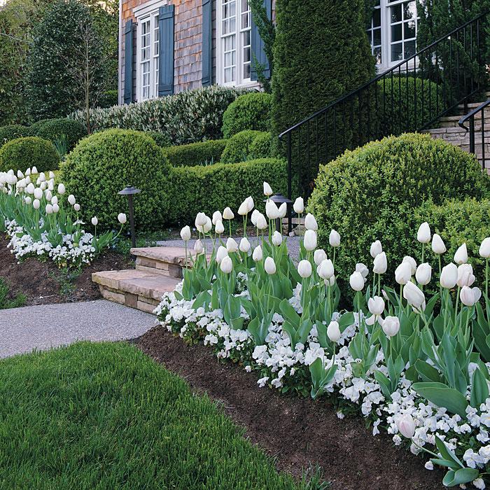 Mass plantings garden gate enotes for Bulb garden designs