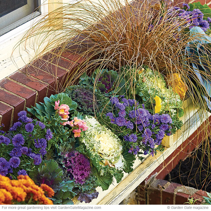 Take care of these fall tasks now garden gate enotes - Fall gardening tasks ...