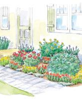 Pretty Peony Entry Garden illustration