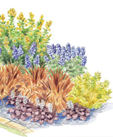 Fantastic Fall Gardens illustration