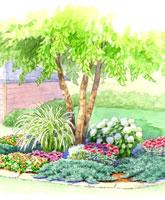Tree Bed Garden