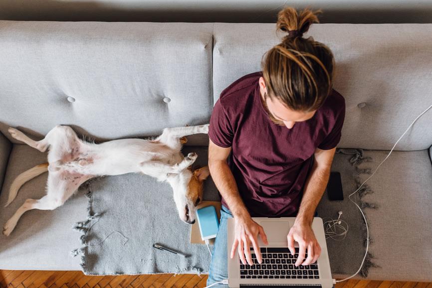 Flexible Work Arrangements Fever