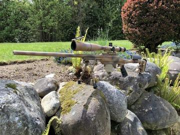 GB-1 at Gunhive.com