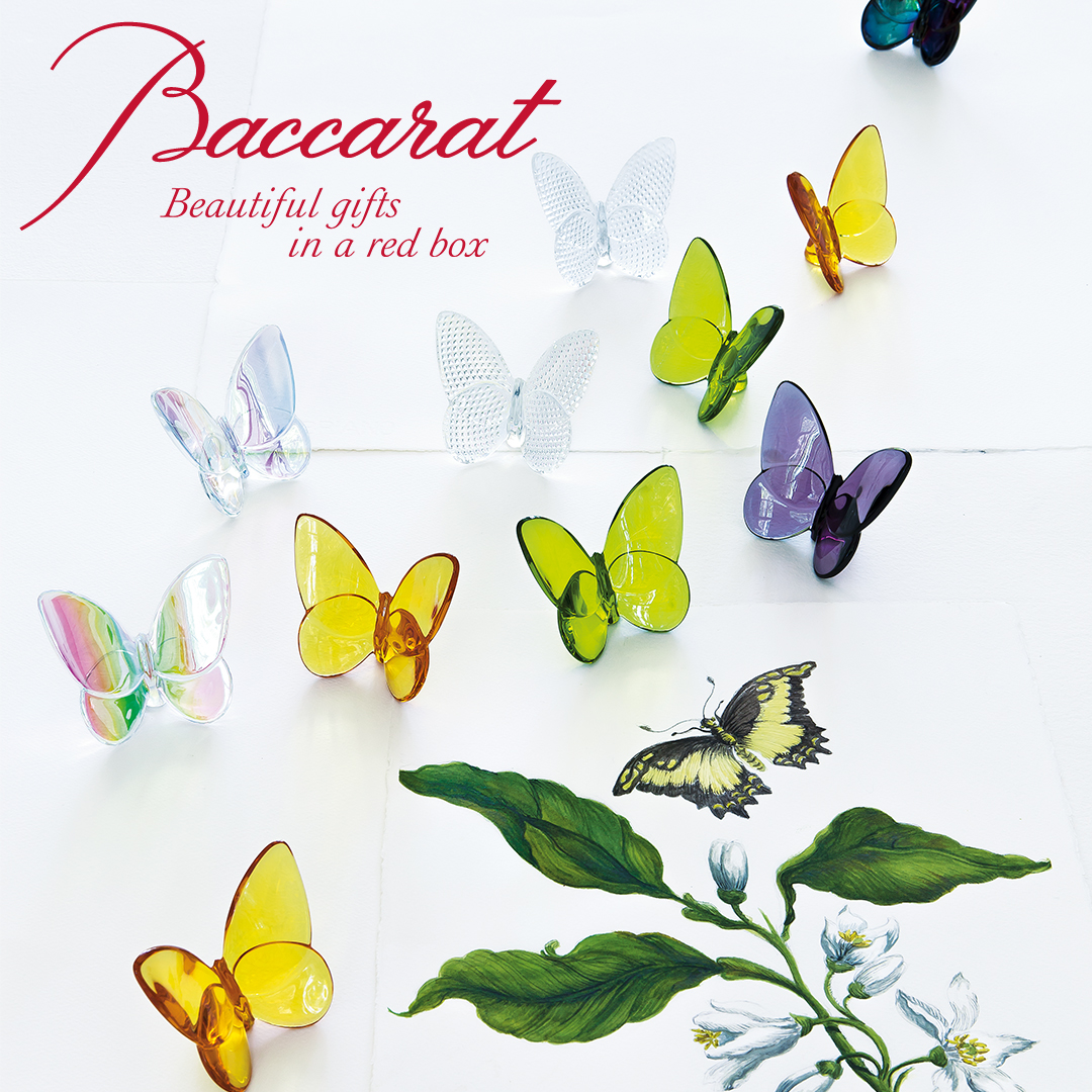Baccarat Butterfly Gift Box