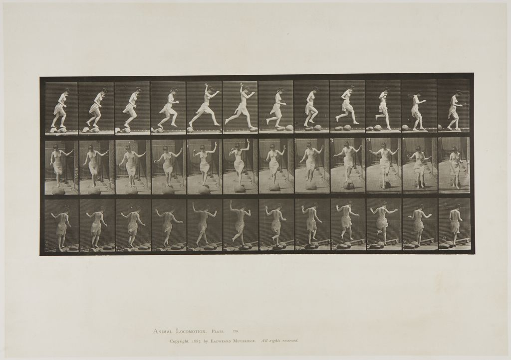 Eadweard Muybridge, Untitled, 1887. Collotype photograph. Harvard Art Museums/Fogg Museum, Purchase through the generosity of Melvin R. Seiden, P1982.337.