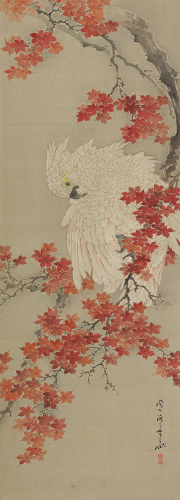 Gantai, Cockatoo on a Red Maple Branch, Edo period, 19th century. Hanging scroll; ink and color on silk. Harvard Art Museums/Arthur M. Sackler Museum, Promised gift of Robert S. and Betsy G. Feinberg, TL41419.6.