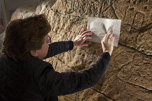Conservator Anne Driesse compares Sewall's tracings of the inscriptions to the surface of Dighton Rock.
