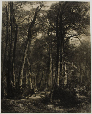Jean-François Millet and Karl Bodmer, Forest Interior with Woodsman, 1851–52. Lithograph on chine collé. Anonymous loan in honor of David Becker, 114.1996.