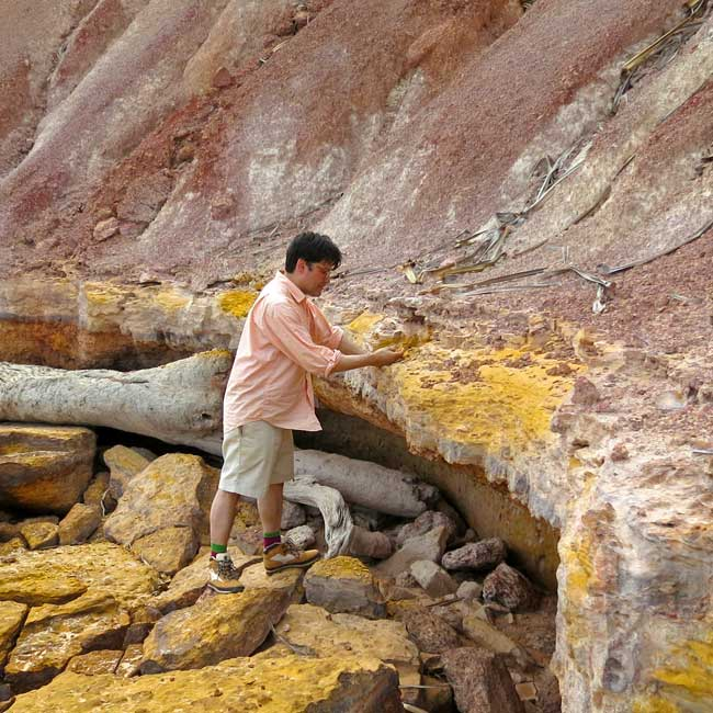 Narayan Khandekar takes samples of yellow ochre for study and to add to the Forbes pigment collection. Photo: Stephen Gilchrist.