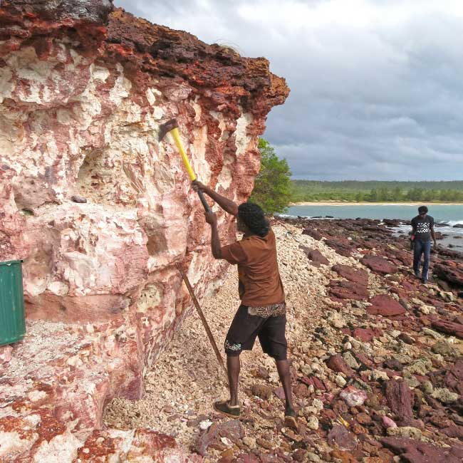 Artist DJ Djuwakan #2 Marika collects white clay to be used as a pigment in Yirrkala. Photo: Narayan Khandekar.