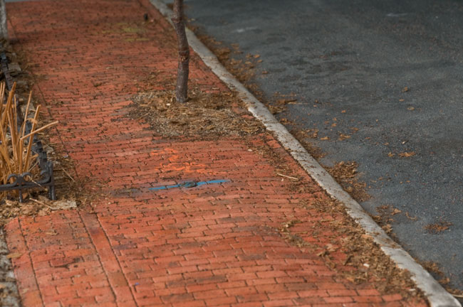 Narayan Khandekar, Outside 33 Bigelow Street, Cambridge, MA. Nov 2008 (detail), 2010–11. Plaster, oil, acrylic, plant matter, polystyrene, paper, wood, cyanoacrylate, silicon carbide, PVA on a plywood support. © Narayan Khandekar. Photo: Tony Sigel.