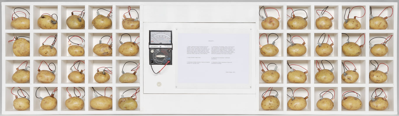 Victor Grippo, Analogia I, 1970–71. Electric circuits, electric meter and switch, potatoes, ink, paper, paint, and wood. Harvard Art Museums/Fogg Museum, Richard Norton Memorial Fund and gift of Leslie Cheek, Jr., 2010.3. © The Estate of Victor Grippo.