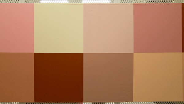 Annette Lemieux, Available Portrait Colors, c. 1990, Harvard Art Museums/Fogg Museum. Photo: Straus Center staff.