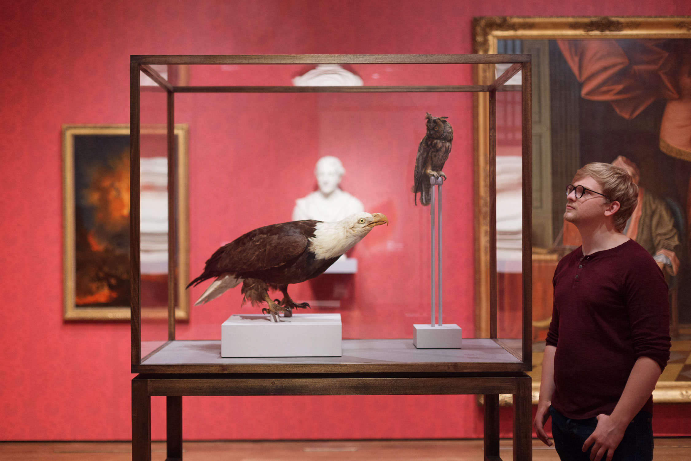 Two bird specimens, prepared by Charles Willson Peale (1741–1827), were selected with the help of Harvard's Peabody Museum of Archaeology and Ethnology and are displayed in a case created by exhibition designer Justin Lee.