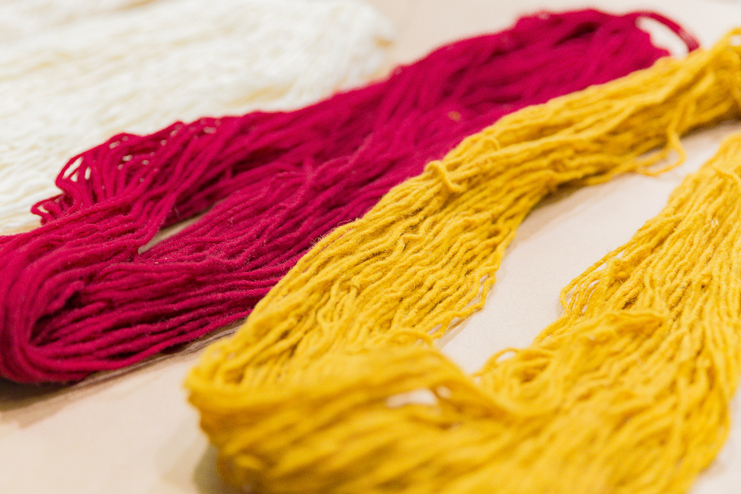 Yarn dyed with pericon, right, is a warm yellow. Yarn dyed with cochineal is a vibrant red.