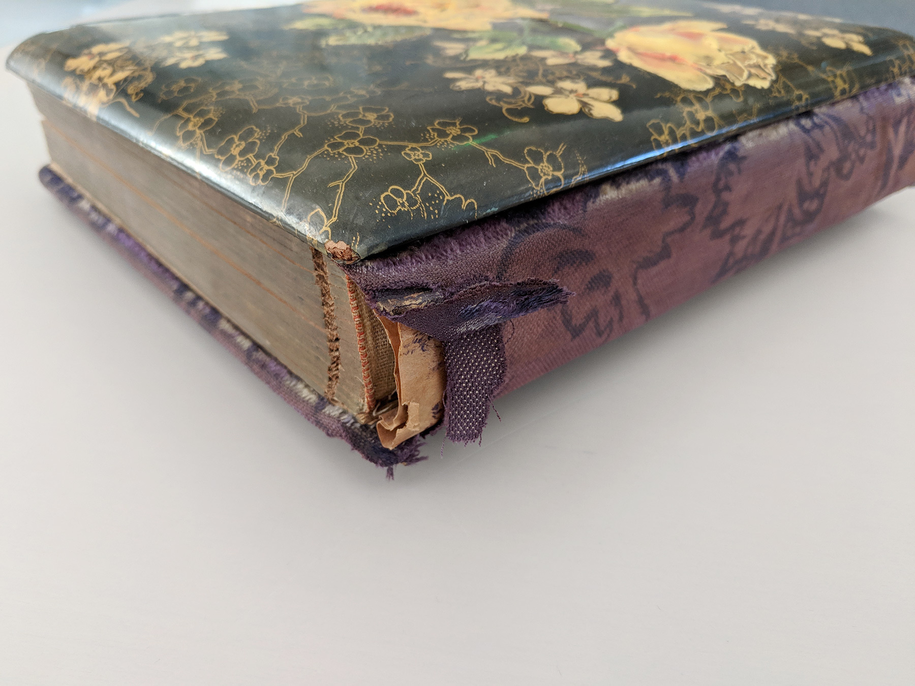 This family album has suffered damage to its textile binding.